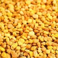 Kosher L'Mehadrin Bee Pollen 250g - Herba Center